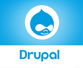 What are the Additional Features of Drupal?